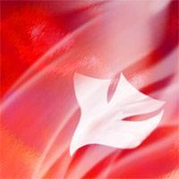 GLORIA DEI – Pentecost